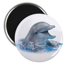 "Happy Dolphin 2.25"" Magnet (100 pack)"