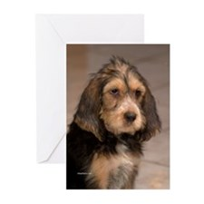 Otteround-6 Greeting Cards (Pk of 10)