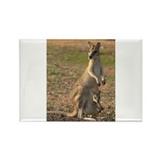 Cute Kangaroo Rectangle Magnet (10 pack)