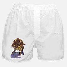 Cute Mallard Boxer Shorts