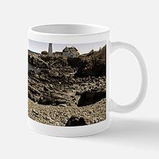 Spring into Maine Mug