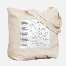 Ancient Waters Tote Bag