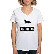 Stabyhoun Shirt