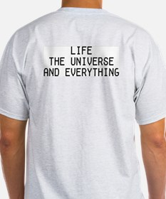42 - Life, The Universe & Everything Ash Grey T-Sh