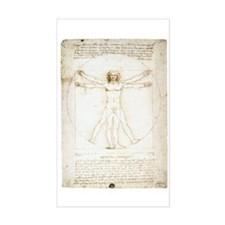 Vitruvian Man Rectangle Decal
