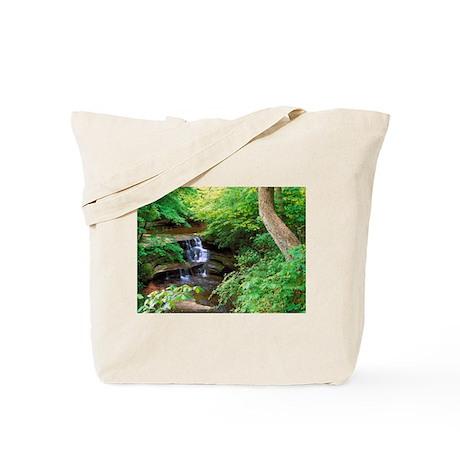 Starved Rock Park Illinois Tote Bag
