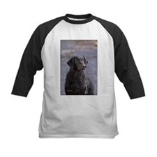 Curly Coated Retriever-1 Tee