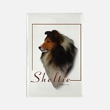 Sheltie-1 Rectangle Magnet (10 pack)