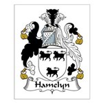 Hamelyn Family Crest Small Poster