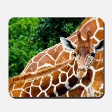 Giraffe Baby Mousepad