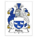Haley Family Crest Small Poster