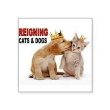 CATS AND DOGS Sticker