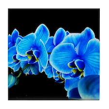 Blue orchids Tile Coaster