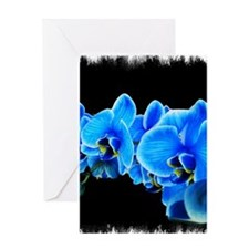 Blue orchids Greeting Cards
