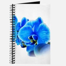 Cute Picture Journal