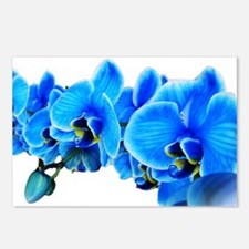 Ice blue orchids Postcards (Package of 8)