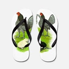 Old English Blue Game Chicken Family Flip Flops