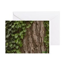Rosh Hashana Tree of Life Greeting Cards (Pk of 20