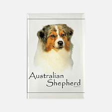 Australian Shepherd-1 Rectangle Magnet