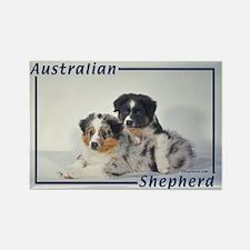 Australian Shepherd-2 Rectangle Magnet