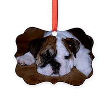 Bull Dog Puppy Ornament
