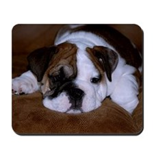 Bull Dog Puppy Mousepad