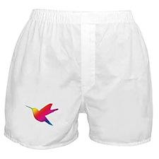 Rainbow Hummingbird Boxer Shorts