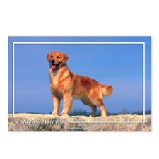 Golden Retriever-5 Postcards (Package of 8)