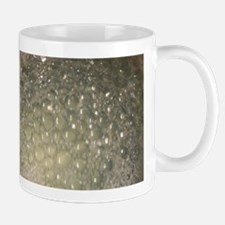 dish water bubbles in pot no filters Mugs