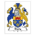 Davy Family Crest Small Poster
