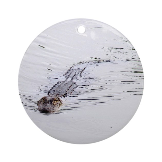Brandon fl pond alligator ornament round by blmsnaturephotos Pond ornaments