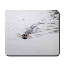 Brandon FL Pond Alligator Mousepad