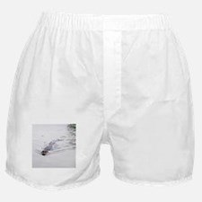 Brandon FL Pond Alligator Boxer Shorts