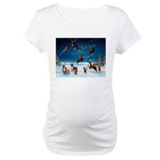 Flying Lessons Corgis & Reind Shirt