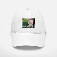 Miniature Poodle-4 Baseball Baseball Cap