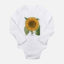 Vintage Sunflower Basilius Besler Body Suit