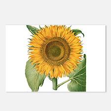 Vintage Sunflower Basiliu Postcards (Package of 8)