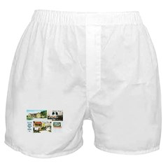 Henry's Wishing Well Boxer Shorts