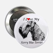 I Love My Kerry Blue-1 Button