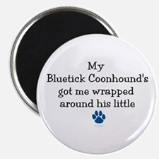 Wrapped Around His Paw (Bluetick Coonhound) Magnet