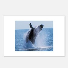 whale jumping Postcards (Package of 8)