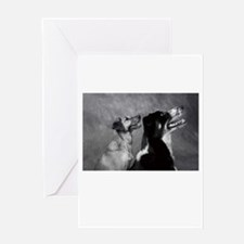 Dog Smiles - Smiling Dogs Greeting Card
