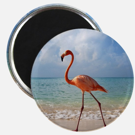 Flamingo On The Beach Magnets