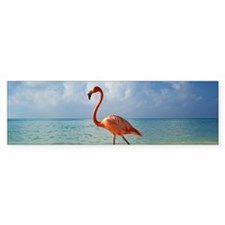 Flamingo On The Beach Bumper Bumper Bumper Sticker