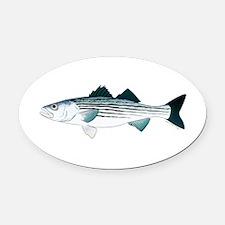 Striped Bass v2 Oval Car Magnet