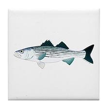 Striped Bass v2 Tile Coaster