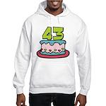 43 Year Old Birthday Cake Hooded Sweatshirt