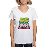 28 Year Old Birthday Cake Women's V-Neck T-Shirt