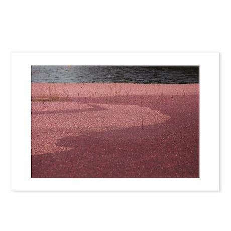 Postcards (Package of 8) - Cranberry Bog