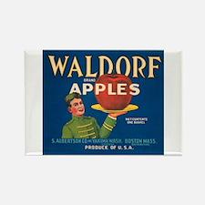 Waldorf Apples Rectangle Magnet